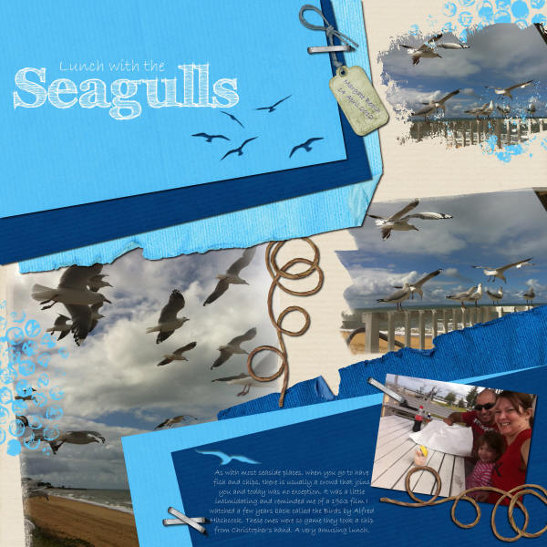 Lunch with the Seagulls
