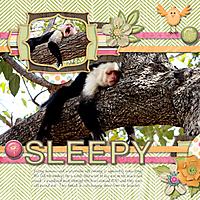 sleepy-monkey-gs-buf.jpg