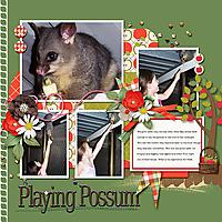 Playing-Possum_webjmb.jpg
