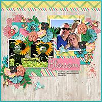 WDW_blossom_web.jpg