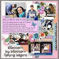 Week_13_Mar_23-_Mar_29.jpg