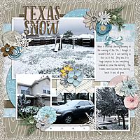 keesha-TexasSnow2017.jpg