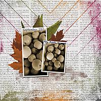 my-apple-harvestweb.jpg