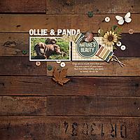 ollie-and-panda.jpg