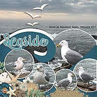 seasideWEB2.jpg