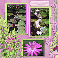tms_touch_of_opal_lilies_-_Page_095.jpg