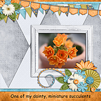 tms_natural_blossoms_succulent_-_Page_089.jpg