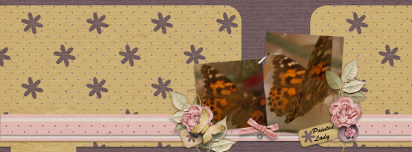 Painted Lady FB cover