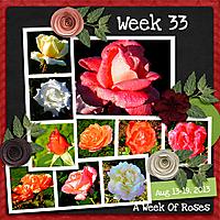 2013_Week_33.jpg
