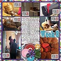 2013_Week_8_cap_525600_minutes_and_Feb_mega_CrisdamD-CL2013-Templates1-04_-_Orange_kitty_by_PinG.jpg
