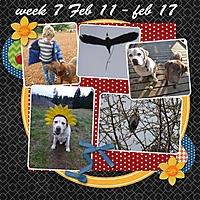 week-7_-2013.jpg