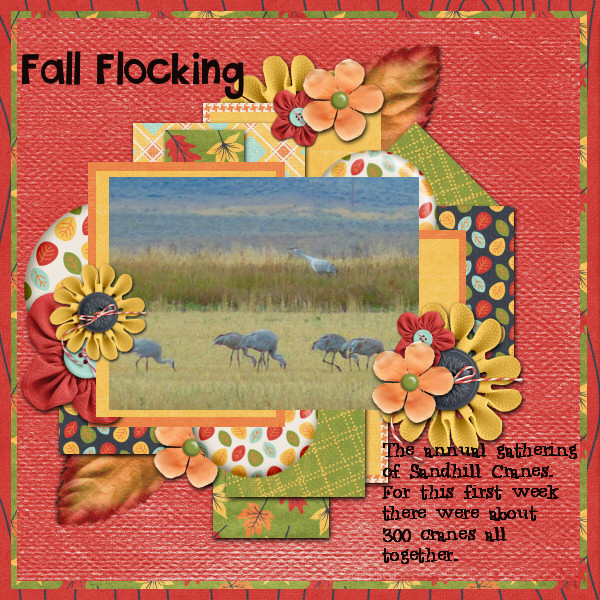 Fall Flocking