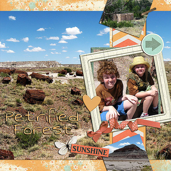 template 1 2013-08 Petrified Forest