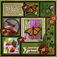 Generations_Of_Monarchs_Web.jpg