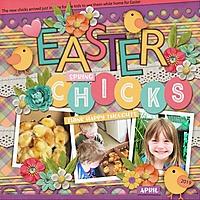 Easter_Chicks_med_-_1_1_.jpg