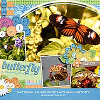 butterfliesWEB.jpg