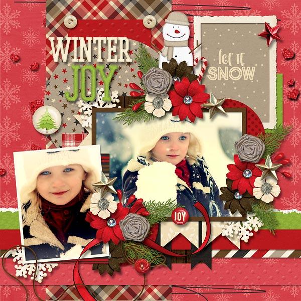A Winter Joy