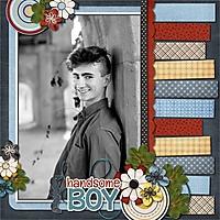 Handsome_Boy1.jpg