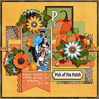 Pick-of-the-Patch_DAK_Oct-2008.jpg