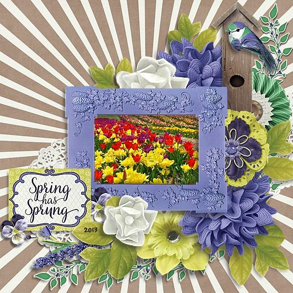 Spring Has Sprung 2013
