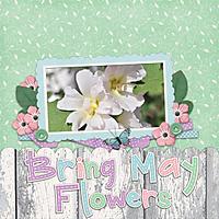 Lainey_CKD_SpringFling2web.jpg