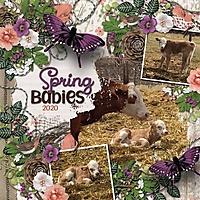 Spring_Babies_med_-_1.jpg