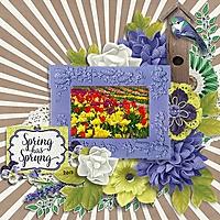Spring_Has_Sprung_2013_600x600.jpg