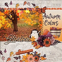 autumn-glory-cathyk-SNP_TP4.jpg