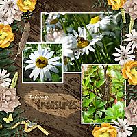 natureweb.jpg