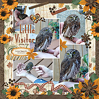 owl-octoberweb.jpg
