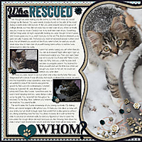 Who-Rescued-Whom.jpg