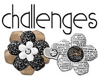 challenges91