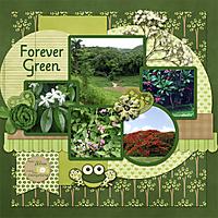 Forever-Green-4GSweb.jpg