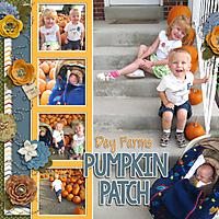 pumpkin-patch-2010.jpg