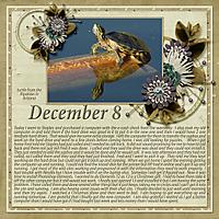 12-December_8_2014_small.jpg