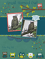 Great-Horned-Owl-_GS_.jpg