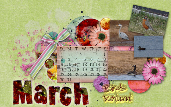 March The Birds Return