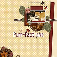 Purr-fect-Life.jpg