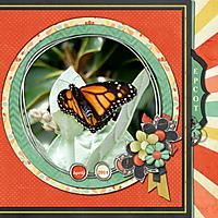 EPCOT_butterfly.JPG