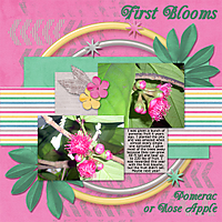 First-Blooms4web.jpg