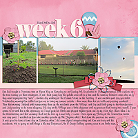 GS_Mix-It-Up-Challenge_P52Week10.jpg