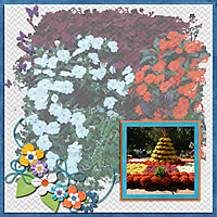 State_Fair_Flowers.jpg