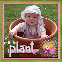 my_little_plant_bearbeitet-1.jpg