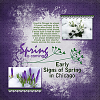 Signs-of-spring-in-Chicago-4gsweb.jpg