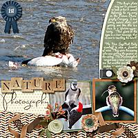 nature-photography-sur3c.jpg