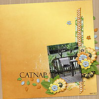 CatNap1.jpg