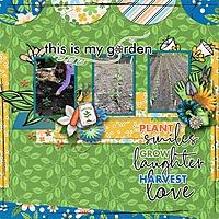 Garden_-_Rochelle.jpg