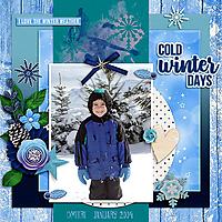 JustBecauseStudio-WinterSolstice-Dmitri1-2004_copy.jpg