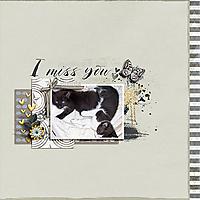 i-miss-you1.jpg