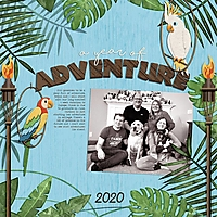 1-a-year-of-adventure2-0106msg.jpg